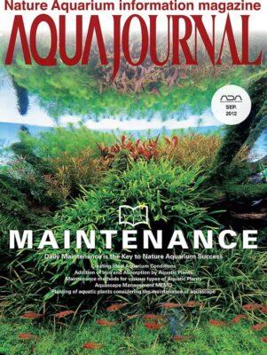 Wraca Aqua Journal w wersji online
