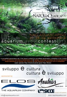 NAQ Live Aquascaping Contest 2013
