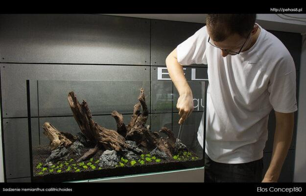 ELOS Concept80 – sadzenie roślin