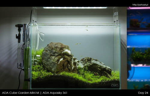 ADA Mini M | Aquasky 361