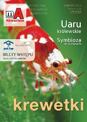 Magazyn Akwarium – Kwiecień 2013