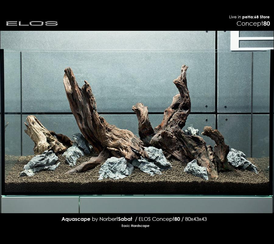 Elos Concept80 Hardscape Peha 68 Akwarium W Stylu Naturalnym