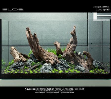 ELOS Concept80 – Planting