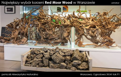 red moor wood