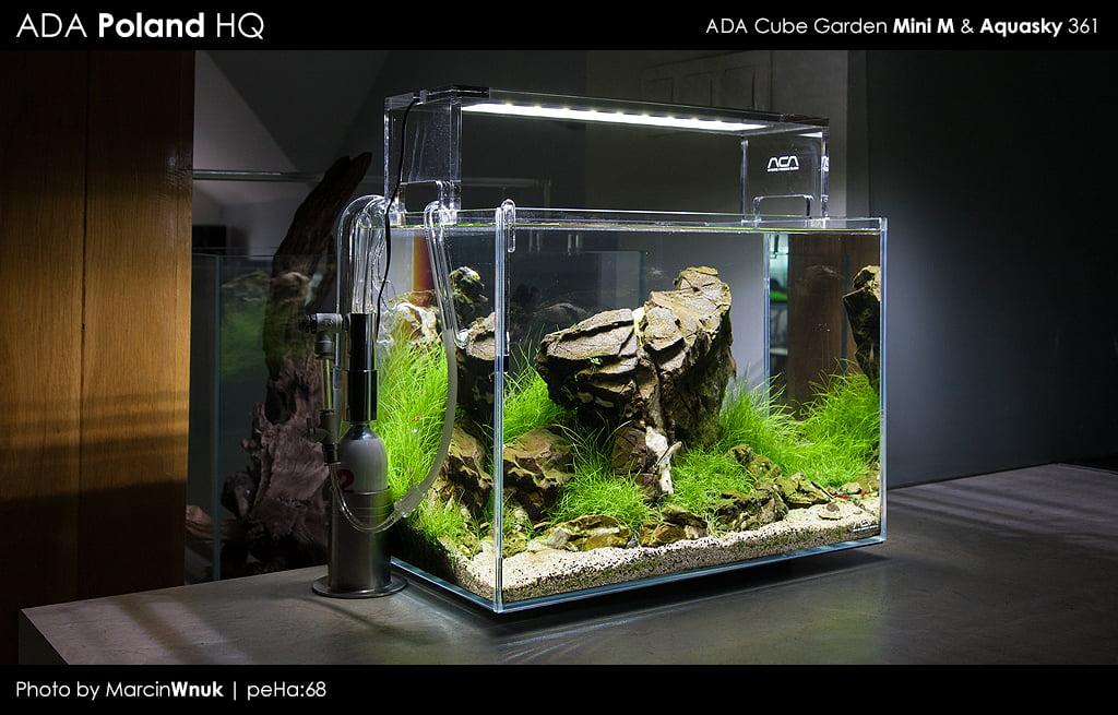 Akwaria Ada Idea Studio Mini M Peha68 Akwarium W