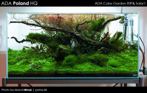 ADA Cube Garden 90P