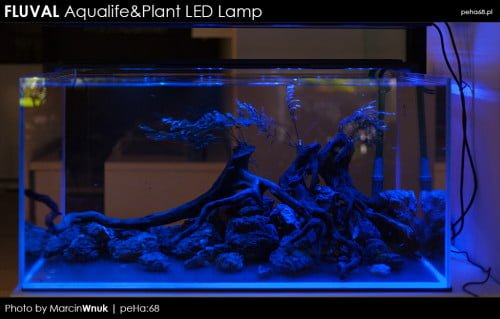 Fluval Aqualife & Plant LED