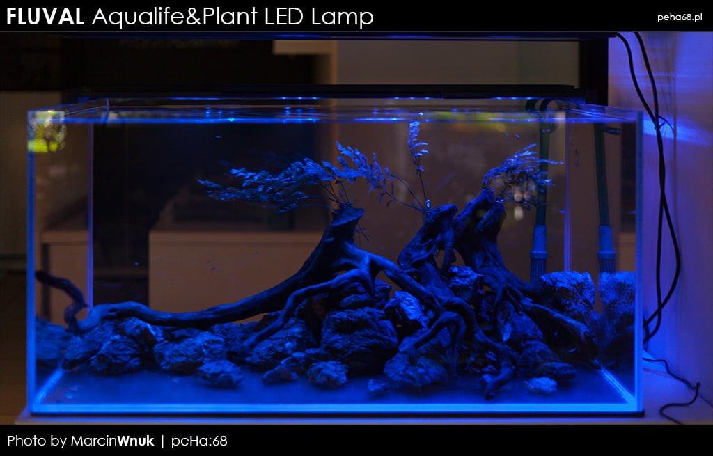 Fluval Aqualifeplant Nowe Lampy Led Peha68 Akwarium