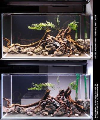 Fluval Aqualife&Plant – nowe lampy LED