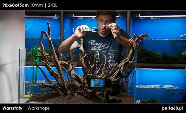 Warsztaty – Zakładanie akwarium naturalnego – fotorelacja