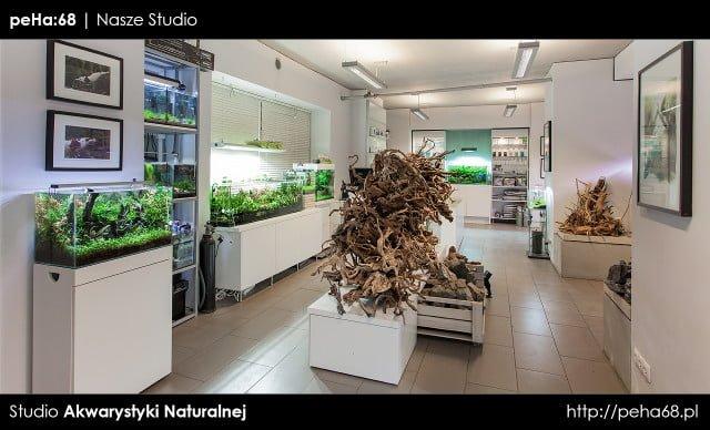 peHa:68 Studio Akwarystyki Naturalnej