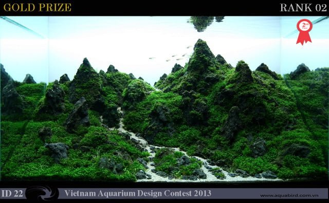 VACD 2013 rank 002