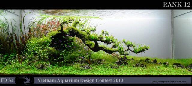 Wyniki Vietnam Aquarium Design Contest 2013