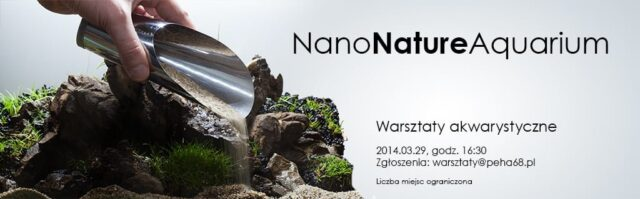 Nano Nature Aquarium – Warsztaty