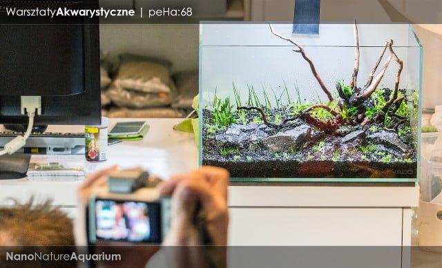 Warsztaty akwarystyczne - Nano Nature Aquarium 022