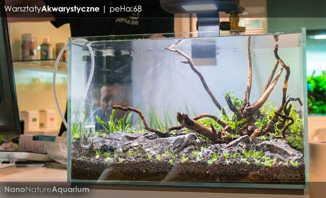 Warsztaty akwarystyczne - Nano Nature Aquarium 034