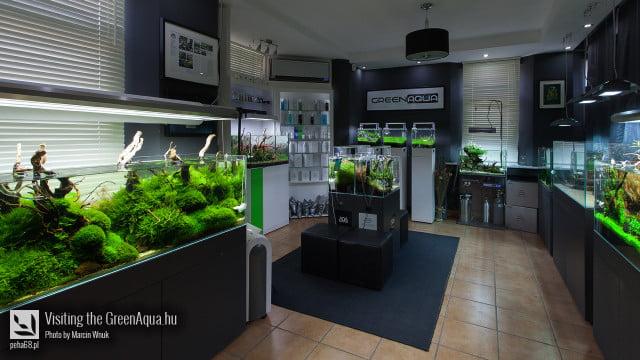 Green Aqua 020