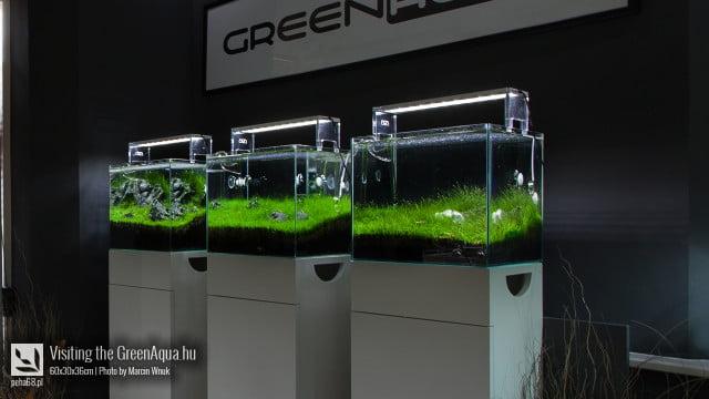 Green Aqua 022