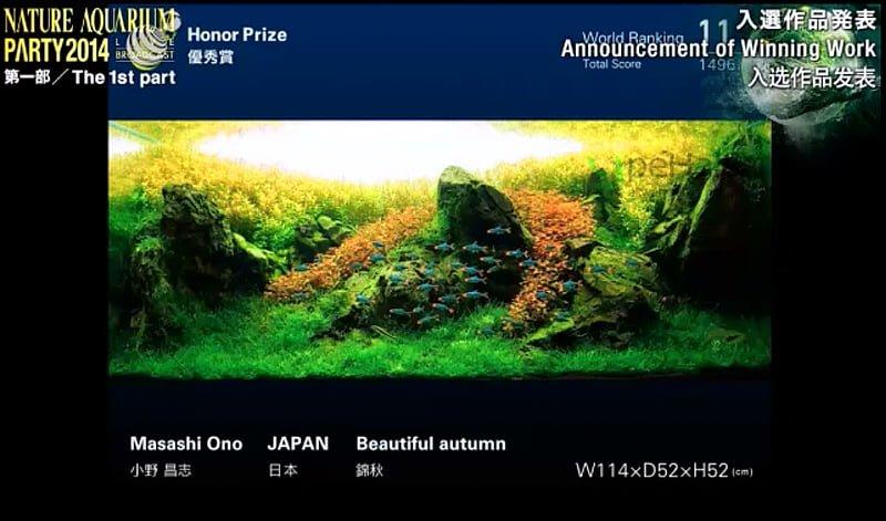 11. Masashi Ono - Beautiful autumn
