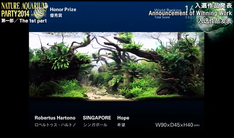 16. Roberthus Hartono - Hope