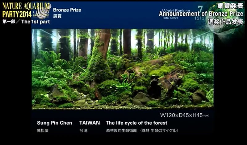 7. Sung Pin Chen - The life cycle of the forest
