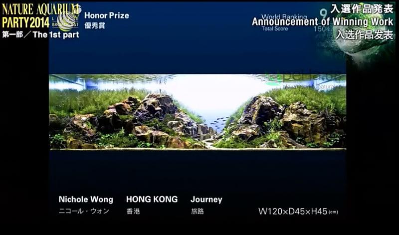 9. Nichole Wong - Journey