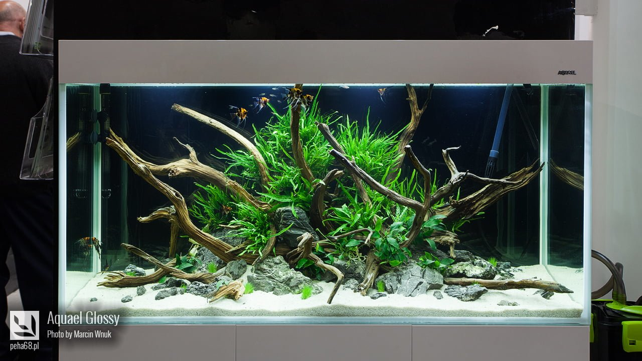 Aquael Glossy