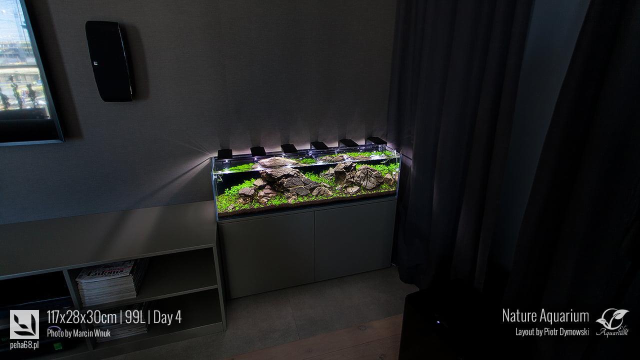 Akwarium NACD 117x28x30cm - Day 4