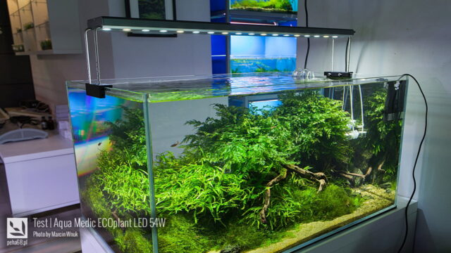 Test lampy LED Aqua Medic ECOplant 54W