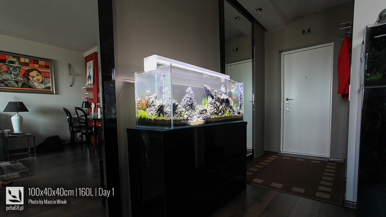 100x40x40cm 160L - Iwagumi 025