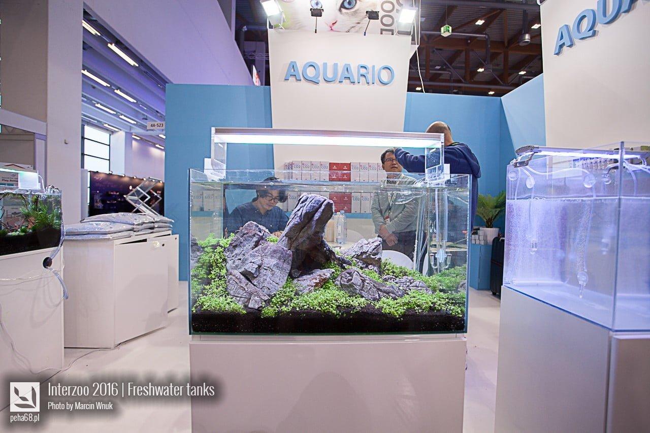 Aquario 02