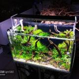 Twinstar Light – Nowe lampy LED
