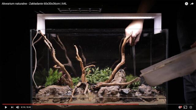 EQUO – Zakładanie akwarium