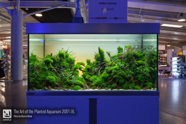 The Art of the Planted Aquarium 2017 – XL