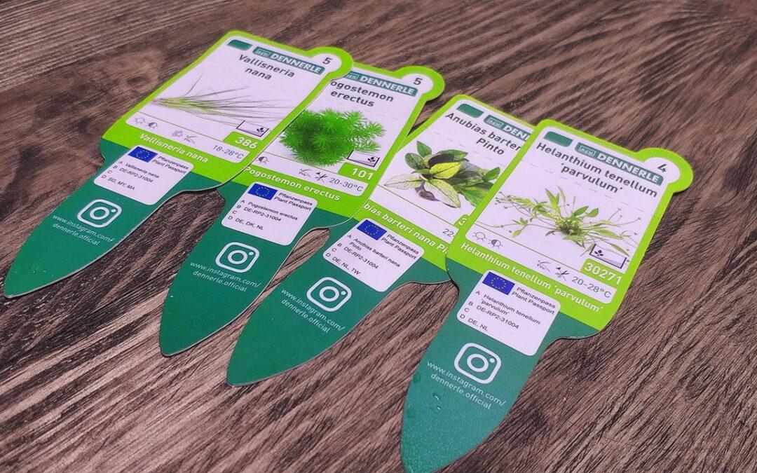 Paszporty dla roślin akwariowych