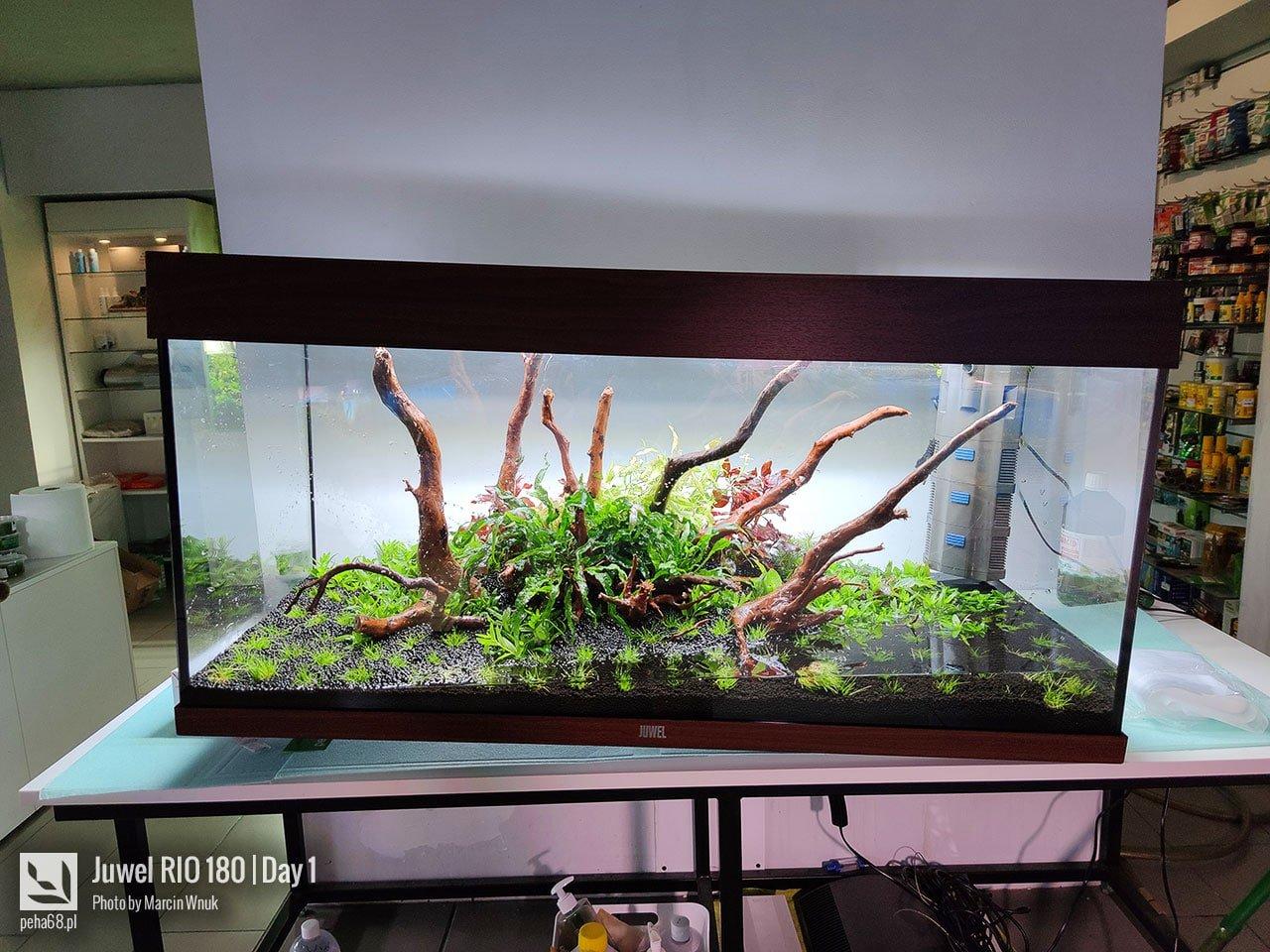 Przewożenie akwarium